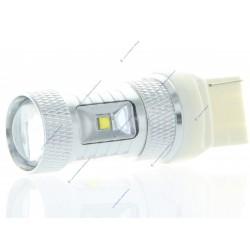 6 Bulb 30w CREE - W21W - di lusso