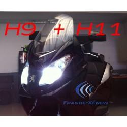 Pack xenon H9 + H11 6000K