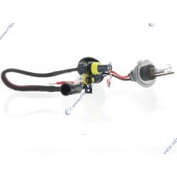 2 x Ampoules xénon pour kit HID 35W