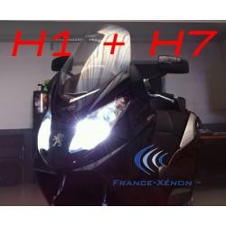 Pack HID xenon H1 + H7 8000K - moto