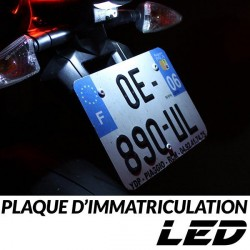 Pack LED plaque immatriculation Scarabeo 125  (PC) - APRILIA