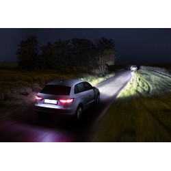 Pack 2 H7-Glühlampen philips racingvision 150% h7 12972rvs2