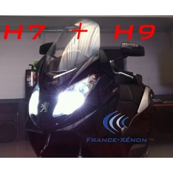 Pack xenon H7 + H9 6000K