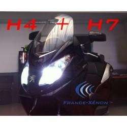 H4 Bi-Xenon + H7 Xenon FZ6 S2 Pack oder anderen