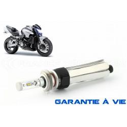 H7 55W Glühbirne xl6s - 4600lm - Motorrad - 12V / 24V
