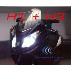 Pack xénon H1 + H3 6000K