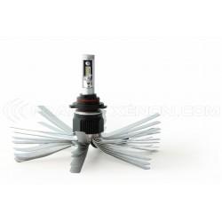 2 x Lampadine HB3 9005 XL6S 55W - 4600Lm