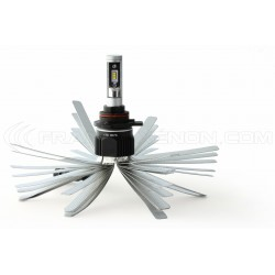 2 x Bombillas HIR2 9012 XL6S 55W - 4600Lm