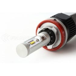 2 x Ampoules H16 XL6S 55W - 4600Lm - Courtes - 12V/24V