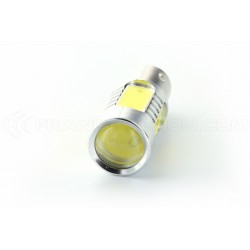 5 LED bulb cob - p21 / 5w - White