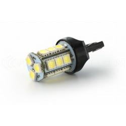 Lampadina 24 LED SMD - W21 / 5W - bianco