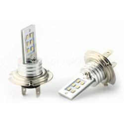 Ampoules 12 LED SS HP - H7 - Blanc