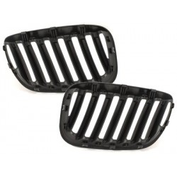 front grill BMW E53 X5 04-06_black