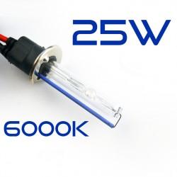 H1 6000K 25W Lampadina