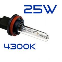 H8 4300K 25W Lampadina