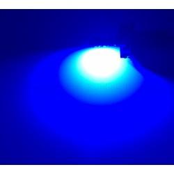 1 x BULB WR5W 4-LED BLUE Super Canbus 53Lms XENLED