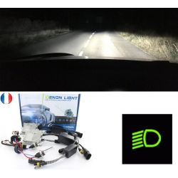 Low Beam Xenon Conversion - Error  free for 19 II (B/C53_) - RENAULT