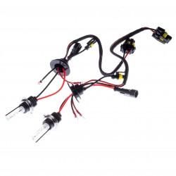 2 x Ampoules xénon pour kit HID