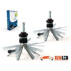 2 x Bulbs PSX24W 5202 XL6S 55W - 4600Lm - Short - 12V/24V