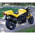 Speed Triple 900  (T300B)