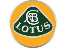 Pack LED Lotus